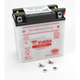 Yumicron High Powered 12-Volt Battery - YB9L-B
