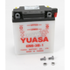 Conventional 6-Volt Battery - 6N6-3B-1