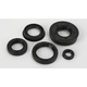 Oil Seal Kit - 0935-0383