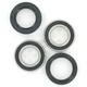 Rear Wheel Bearing Kit - PWRWK-P15-000
