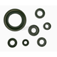 Oil Seal Kit - 0935-0394