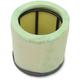 Pre Oiled Air Filter - 3010