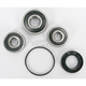Rear Wheel Bearing and Seal Kit - PWRWS-H53-000