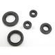 Oil Seal Kit - 0935-0382