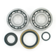 Crank Bearing/Seal Kit - 0924-0221