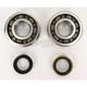 Main Bearing and Seal Kit - K057