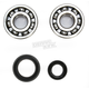 Crank Bearing and Seal Kit - 23.CBS12086
