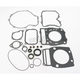 Complete Gasket Set with Oil Seals - M811821