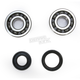 Crank Bearing and Seal Kit - 23.CBS22086