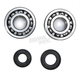 Crank Bearing and Seal Kit - 23.CBS43087