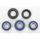 Rear Wheel Bearing Kit - A25-1066