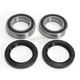 Rear Wheel Bearing Kit - 301-0026