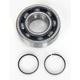 Main Bearing and Seal Kit - K081