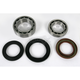 Rear Wheel Bearing Kit - PWRWK-Y16-030