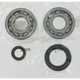 Crank Bearing/Seal Kit - A24-1004