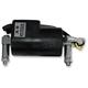6V 1.09ohm Ignition Coil - 24-72454
