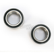 Rear Wheel Bearing Kit - PWRWK-P23-000