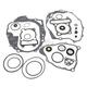Complete Gasket Kit w/Oil Seals - 0934-4587