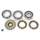 Rear Differential Bearing Kit - 1205-0246