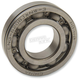 Crankshaft Bearings - 317201