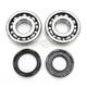 Crank Bearing Kit - 0924-0214