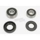 Rear Wheel Bearing Kit - PWRWK-K08-008