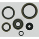 Oil Seal Set - 0934-0167