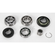 Rear Differential Bearing for Shaft Drive Models - 1205-0188