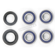 Wheel Bearing and Seal Kit - 25-1381