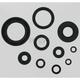 Oil Seal Set - M822122