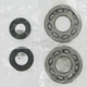 Crank Bearing/Seal Kit - A24-1010