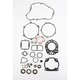 Complete Gasket Set with Oil Seals - M811440