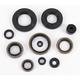 Oil Seal Set - 0935-0052