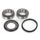 Steering Stem Bearing Kit - 203-0028