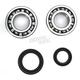 Crank Bearing and Seal Kit - 23.CBS33088