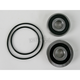 Rear Wheel Bearing and Seal Kit - PWRWS-Y09-000
