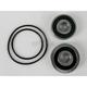 Rear Wheel Bearing and Seal Kit - PWRWS-Y09-000