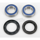 Wheel Bearing and Seal Kit - 25-1102