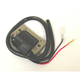 External Ignition Coil - IGN-083A