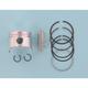 High-Performance Piston Assembly - 4880M04800
