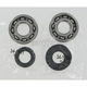 Crank Bearing/Seal Kit - 0924-0048