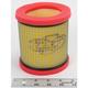 Air Filter - DT1-3-15-01
