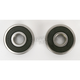 Rear Wheel Bearing Kit - PWRWK-S40-000