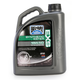 EXS Synthetic Ester 4T Engine Oil - 99162-B4LW