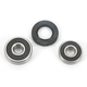 Rear Wheel Bearing Kit - PWRWK-H28-001