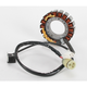 Charge Guard Replacement Stator - 21-3312