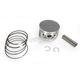 Piston Assembly - 50-220-05K