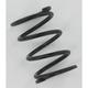 Black Clutch Spring - 204115A