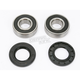 Rear Wheel Bearing Kit - PWRWK-S07-001