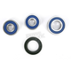Rear Wheel Bearing and Seal Kit - 25-1287